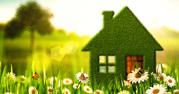 A miniature house with green vines covering whole house with butterfly and flowers