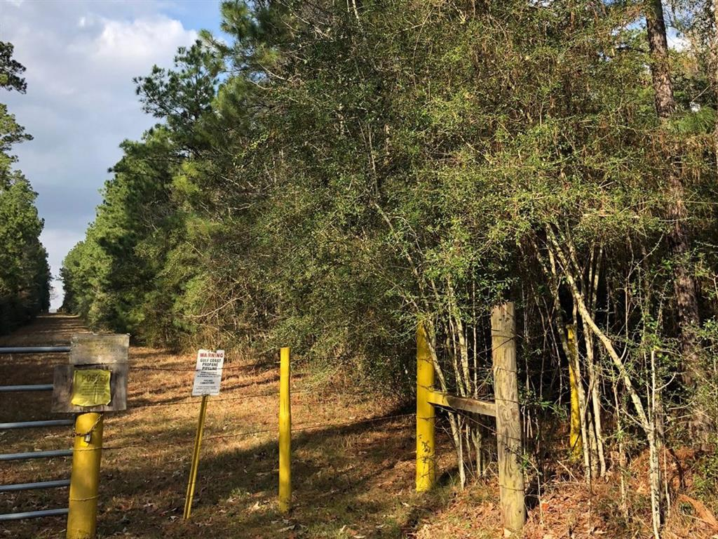 93 Ac Gibbs Pipeline Road, Willis, Texas 77378, ,Country homes/acreage,For Sale,Ac Gibbs Pipeline Road,7940284