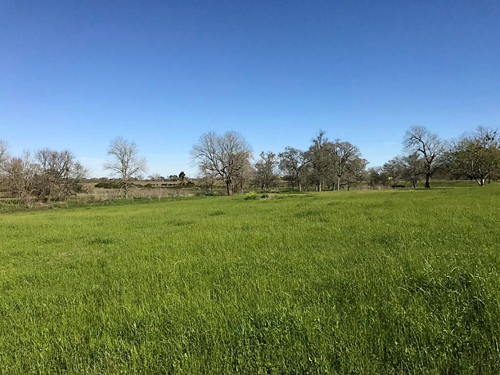 11001 HWY 36, Bellville, Texas 77418, ,Country homes/acreage,For Sale,HWY 36,59129740