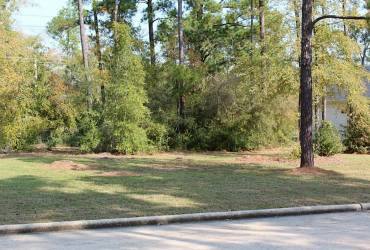 118 Wick Willow Road, Montgomery, Texas 77356, ,Lots,For Sale,Wick Willow,1099155