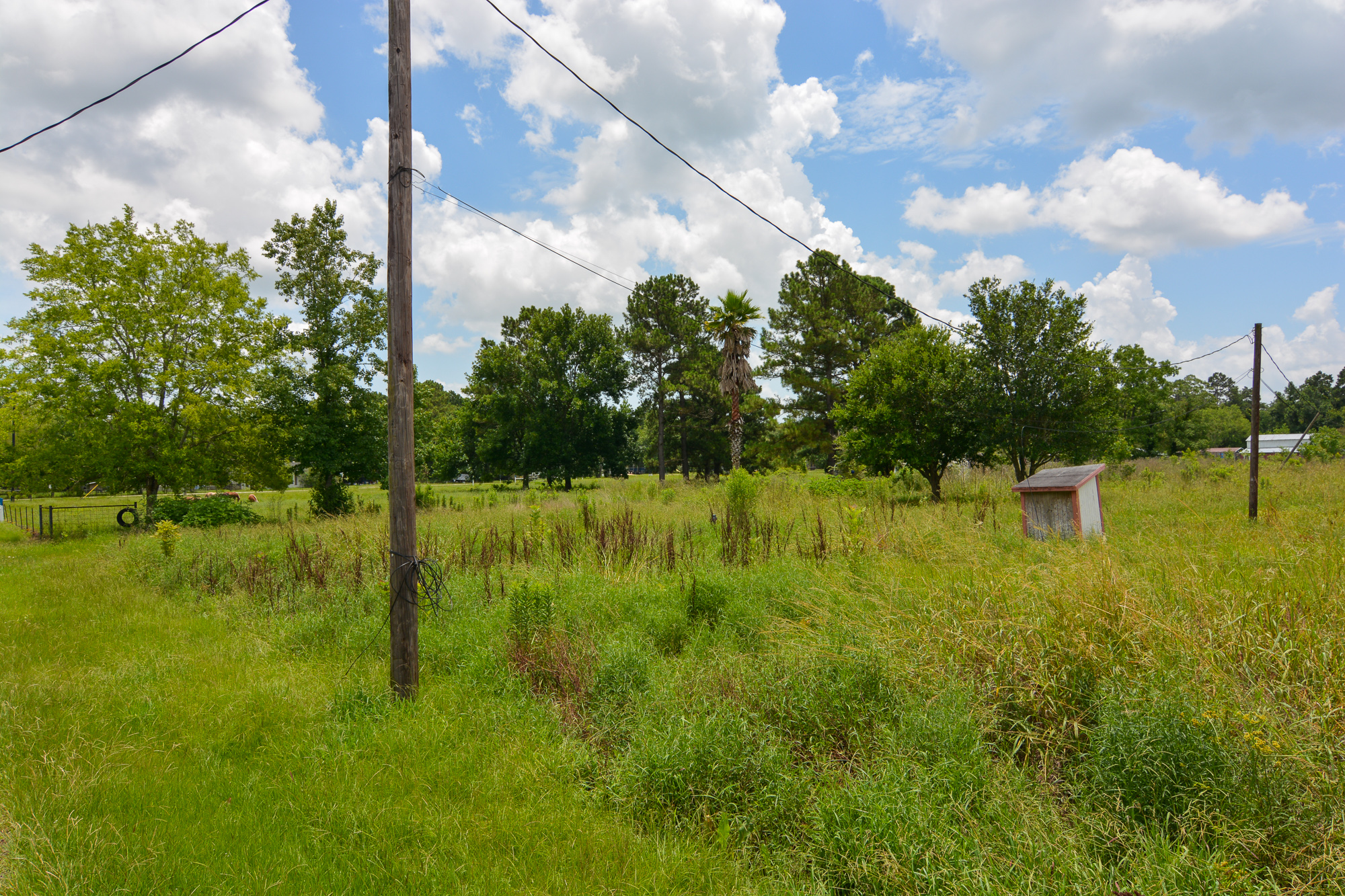 5002 Dairy Oaks Rd, Crosby, Texas 77532, ,Country homes/acreage,For Sale,Dairy Oaks Rd,108629923