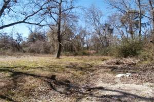 0 Betty Joyce Lane, Houston, Texas 77338, ,Lots,For Sale,Betty Joyce,54270540