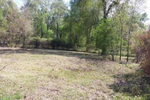 25 #C Pines Road, New Caney, Texas 77357, ,Lots,For Sale,Pines,98970999